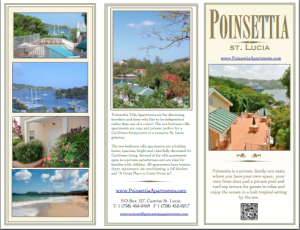 Marketing Flyer for Hotels, Travel and Tourism