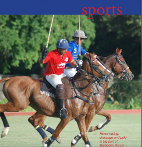 Polo and horse racing - A  Barbados Heritage to Enjoy on Your Barbados holidays