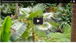 Barbados Family Holidays Video
